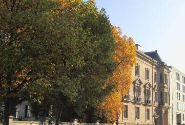 Deutsche Parlamentarische Gesellschaft