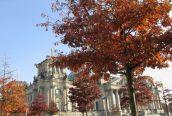 Das Reichstagsgebäude im goldenen Oktober